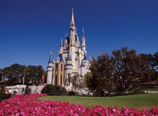 I have a rental near Disneyworld